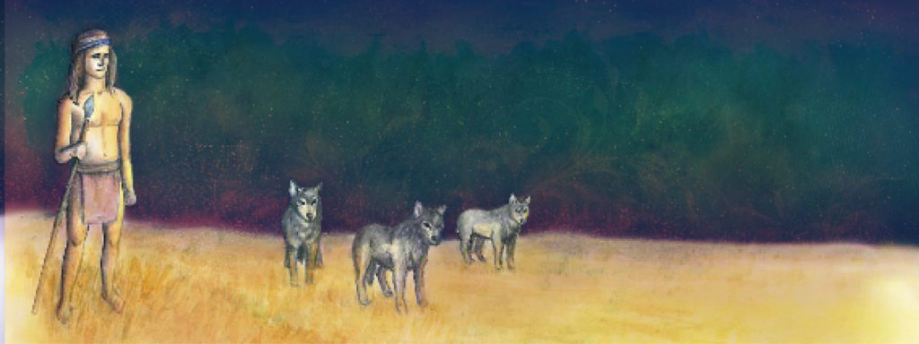 An early human standing with three wolvbes in a field.