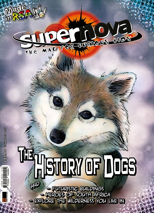 Supernova issue 3.4 cover image featuring an illustration of a husky