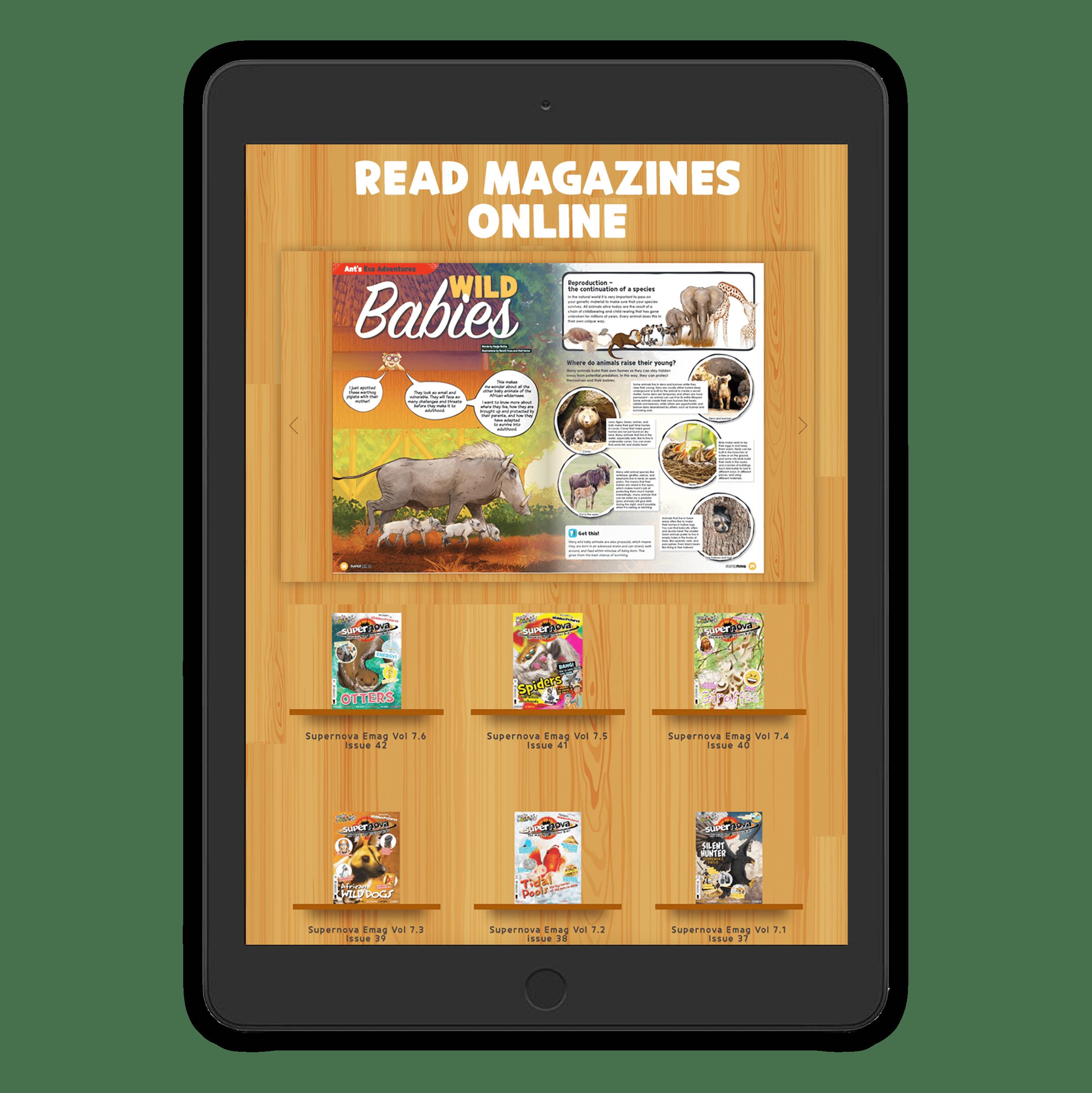 Supernova magazine SN Online on Tablet