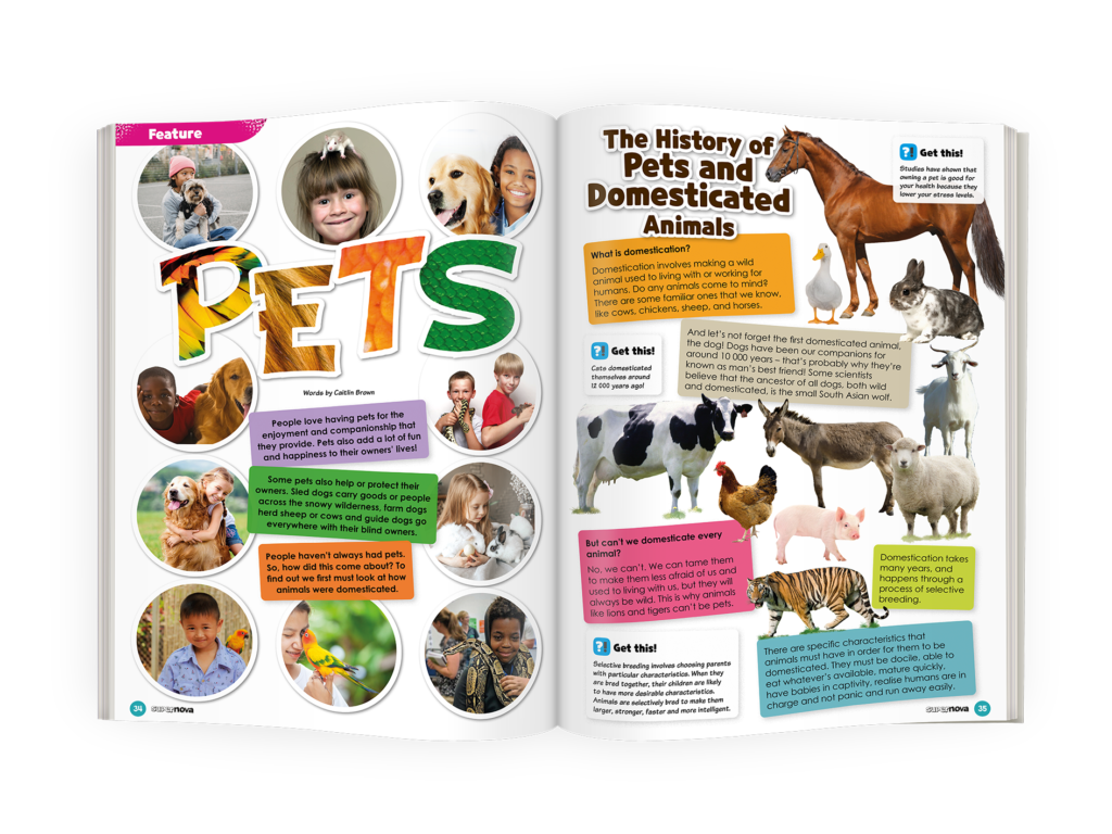 Mockup of Pets Feature from Supernova Magazine Vol 9.6